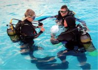 Croatia Divers: Briefing in water